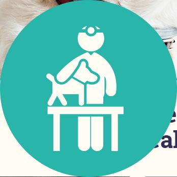 La Verde Veterinarios - Clínica veterinaria para mascotas