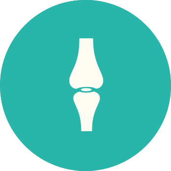 La Vereda Veterinarios - Ortopedia equina